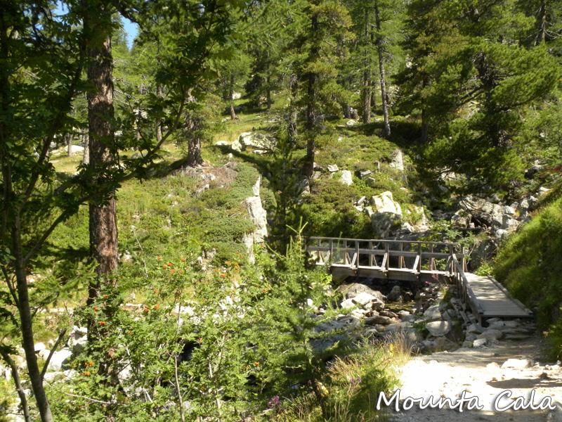 DSCN8164 copie Le lac Nègre   Vallée de la Vésubie