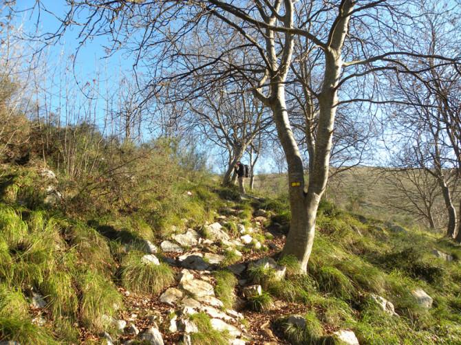 DSCN8938 45 670x502 Randonnée au Baou des blancs   Pays Vençois