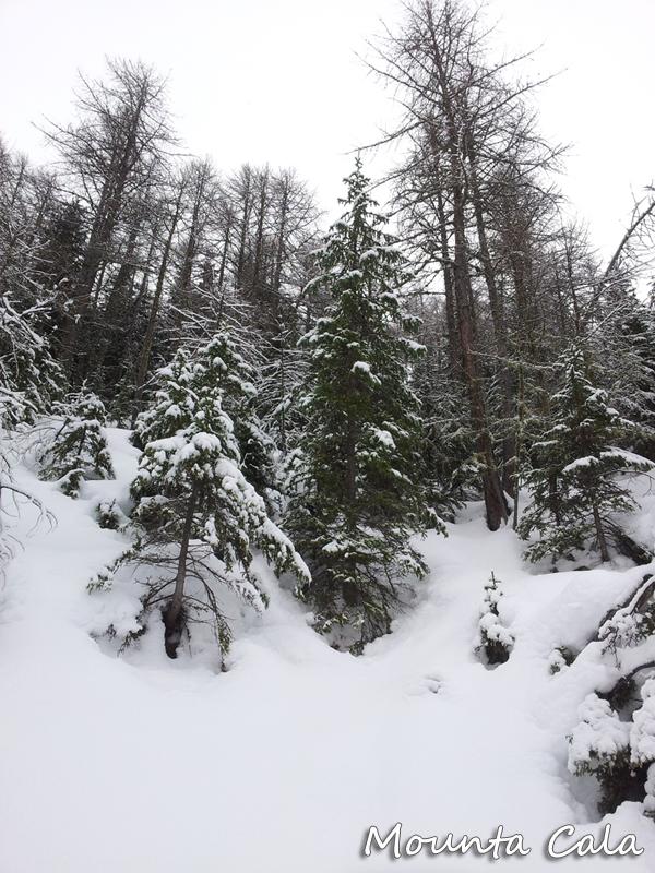 20121227 110739 Escapade à Pra Loup   Alpes de Haute Provence