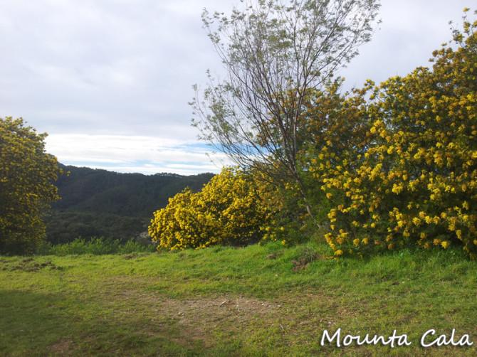 20130203 151249 670x502 Randonnée au Mont St Martin   Estérel