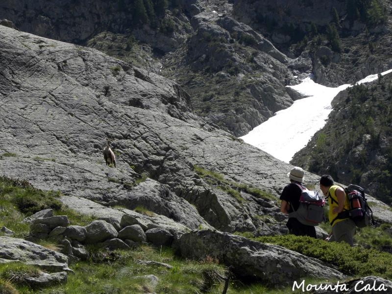 DSCN2839 copie Randonnée au lac Autier   Vallon de la Gordolasque