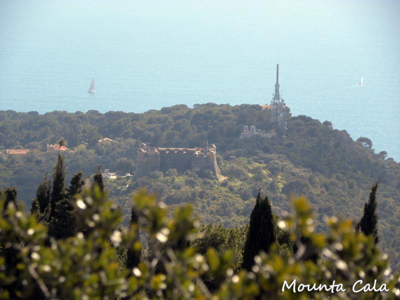DSCN988481 Balade au Parc du Mont Vinaigrier à Nice