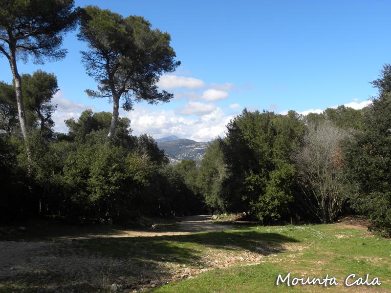 DSCN99141 Balade au Parc du Mont Vinaigrier à Nice