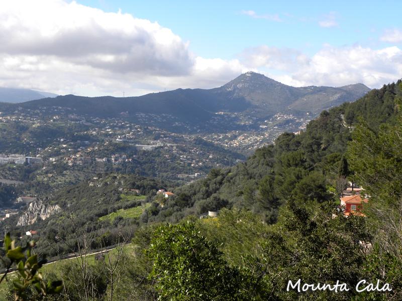 DSCN9929 Balade au Parc du Mont Vinaigrier à Nice