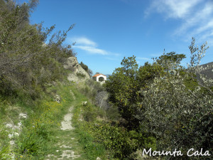 DSCN01748 300x225 Chemin menant à la chapelle