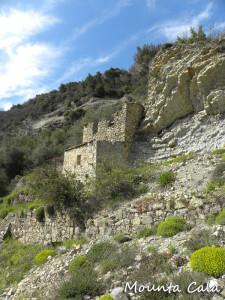 DSCN01974 225x300 Ruines au milieu des euphorbes