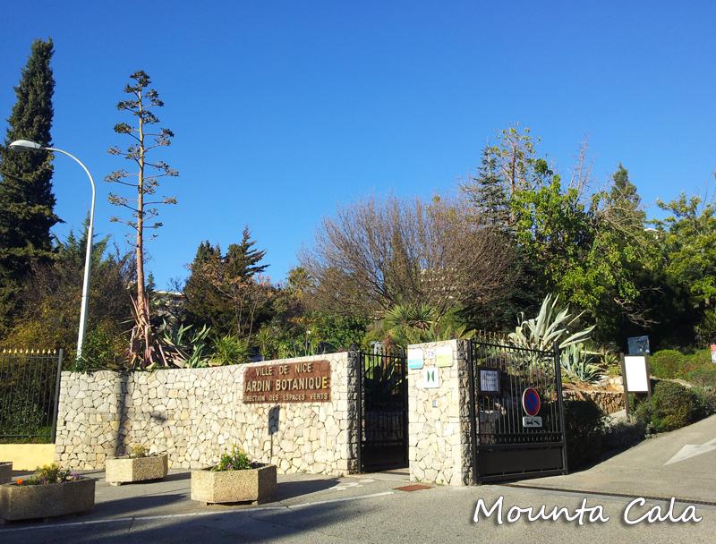 Promenade au jardin botanique de nice littoral mountacala for Jardin botanique nice