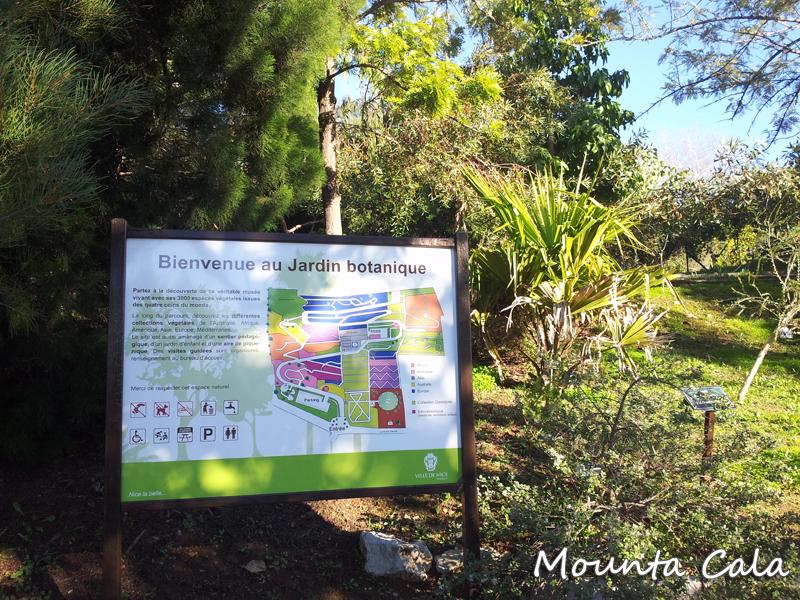 20140124 152123 Promenade au jardin botanique de Nice   Littoral